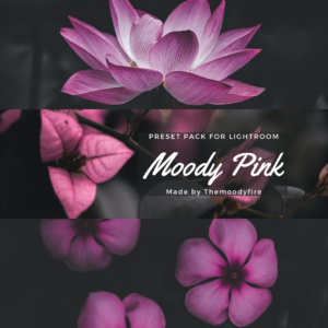 Pink Dark and Moody Lightroom Presets